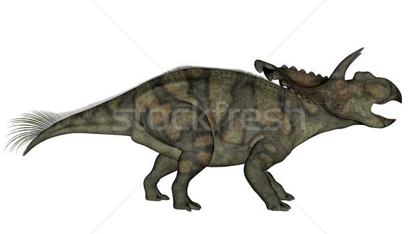 Albertaceratops dinosaur - 3D render Stock photo © Elenarts