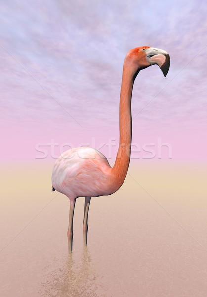 Flamingo - 3D render Stock photo © Elenarts