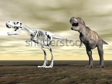 Tyrannosaurus rex skeleton - 3D render Stock photo © Elenarts