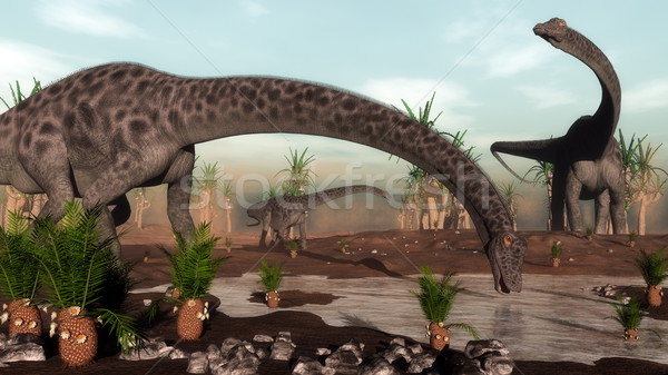 Diplodocus dinosaurs herd going to drink - 3D render Stock photo © Elenarts