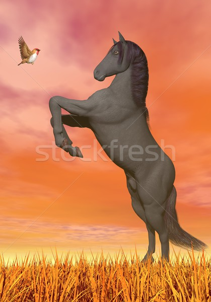 Horse and butterfly meeting - 3D render Stock photo © Elenarts