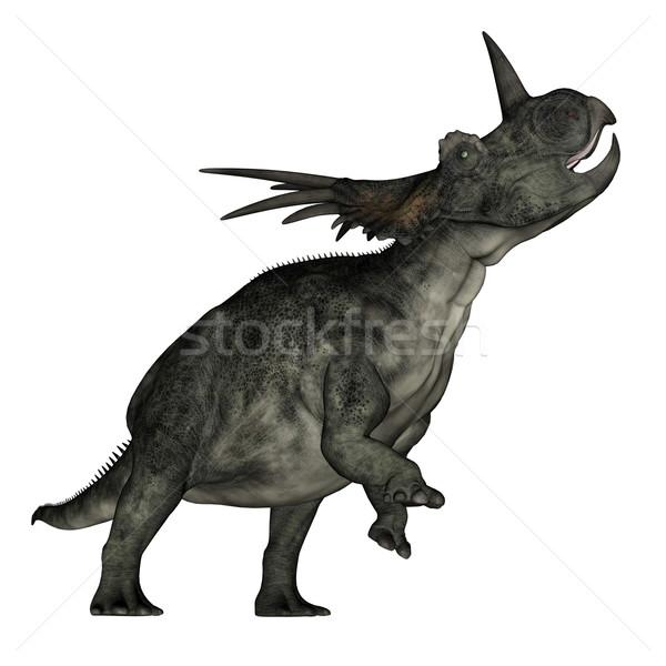 Styracosaurus dinosaur roaring - 3D render Stock photo © Elenarts