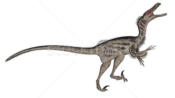 Stock photo: Velociraptor dinosaur - 3D render