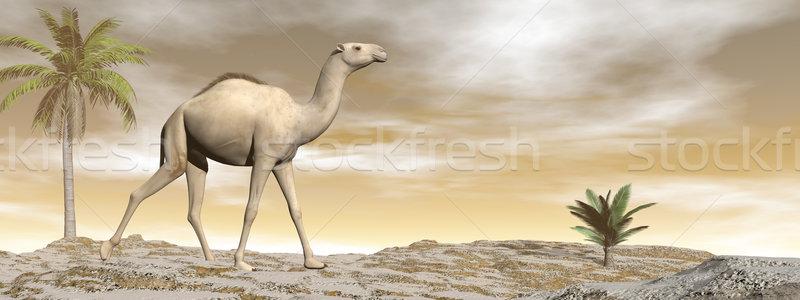 верблюда ходьбе 3d визуализации песчаная дюна пальмами коричневый Сток-фото © Elenarts