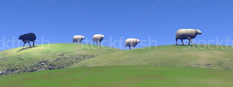 Black sheep - 3D render Stock photo © Elenarts