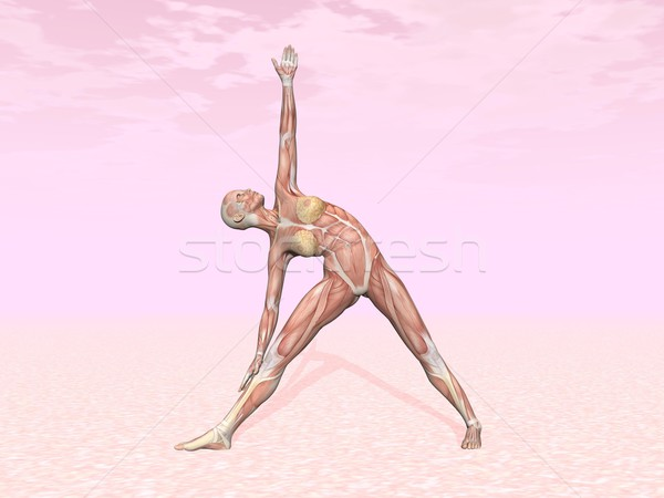 Triangle yoga pose for woman with muscle visible Stock photo © Elenarts