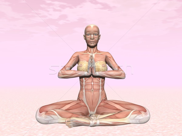 Meditation yoga pose for woman with muscle visible Stock photo © Elenarts