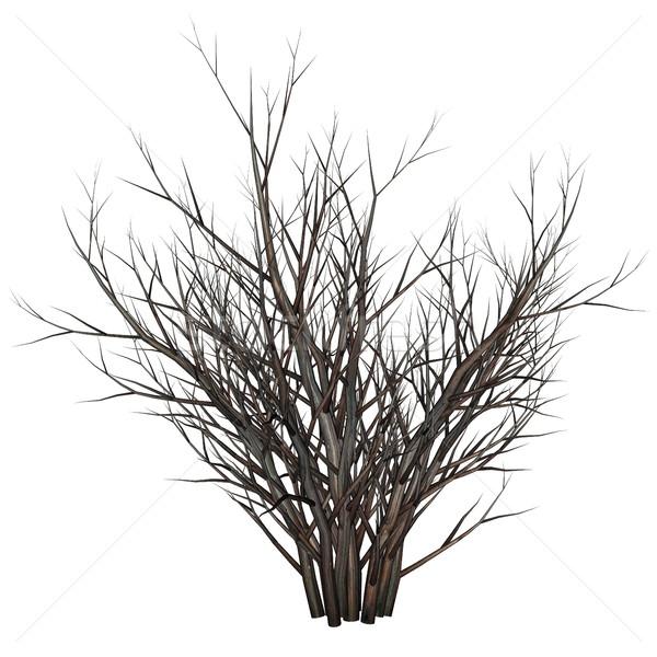 枯れ木 茂み 1泊 3dのレンダリング 砂漠 カラス ストックフォト © Elenarts