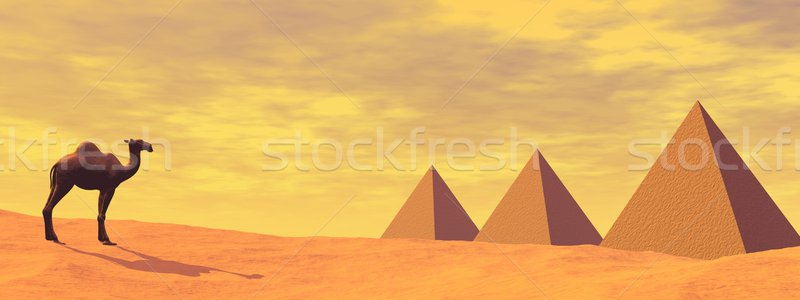 Camel and mysterious pyramids - 3D render Stock photo © Elenarts