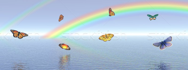 Papillons Rainbow beaucoup calme océan Photo stock © Elenarts
