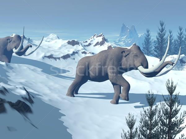 Mammoths walk Stock photo © Elenarts