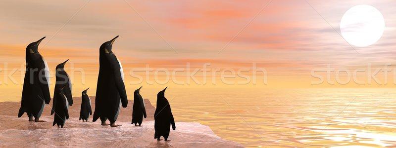Osztás szépség 3d render pingvin család naplemente Stock fotó © Elenarts