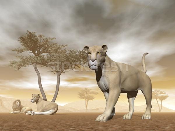 Szavanna 3d render oroszlán nyáj baba esernyő Stock fotó © Elenarts