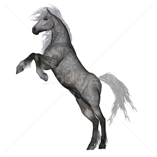 White horse rearing - 3D render Stock photo © Elenarts