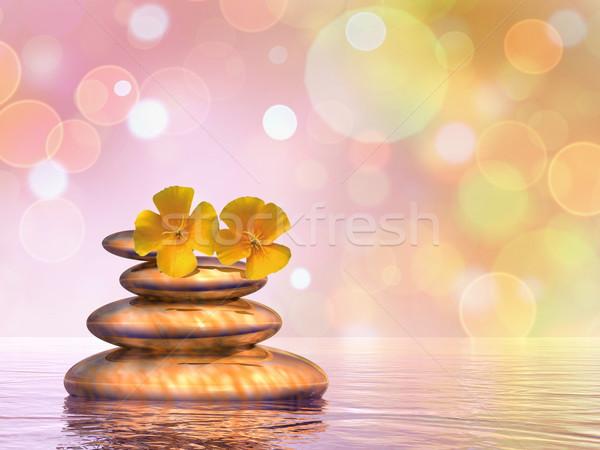 Paisible cailloux rendu 3d équilibre deux fleurs Photo stock © Elenarts