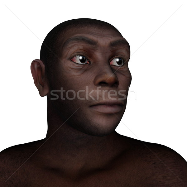 Female homo erectus portrait - 3D render Stock photo © Elenarts