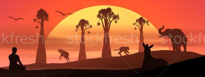 Meditação animais selvagens pôr do sol humanismo meditando natureza Foto stock © Elenarts