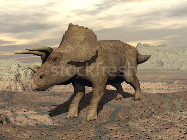 Tricera dinosaur standing - 3D render Stock photo © Elenarts
