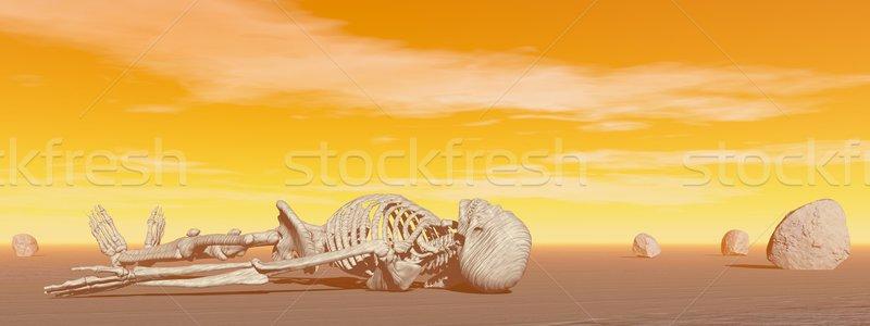 Csontváz sivatag 3d render kövek forró naplemente Stock fotó © Elenarts