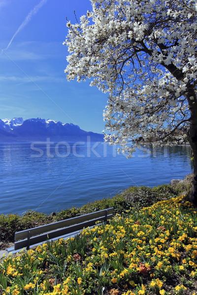 Springtime at Geneva or Leman lake, Montreux, Switzerland Stock photo © Elenarts