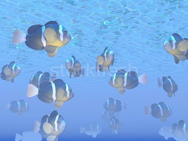 Many Clarks clown fishes - 3D render Stock photo © Elenarts