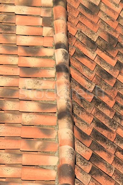 Tiles on a roof Stock photo © Elenarts