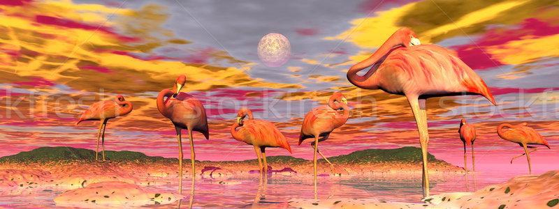 Pôr do sol 3d render em pé água colorido Foto stock © Elenarts