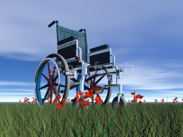 Wheelchair in nature - 3D render Stock photo © Elenarts