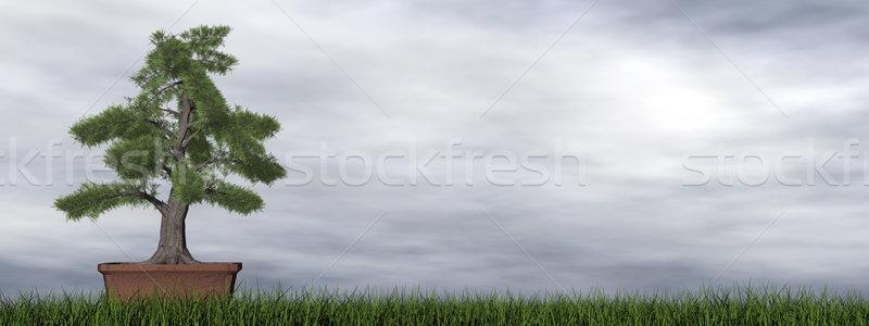 храма дерево бонсай 3d визуализации зеленая трава трава Сток-фото © Elenarts