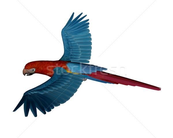Scarlet macaw, parrot, flying - 3D render Stock photo © Elenarts