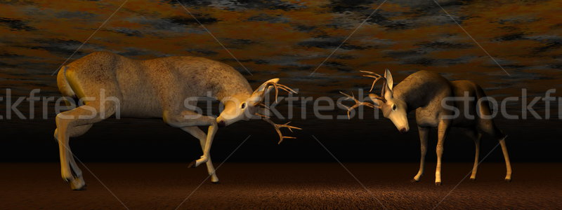 Bucks fighting - 3D render Stock photo © Elenarts