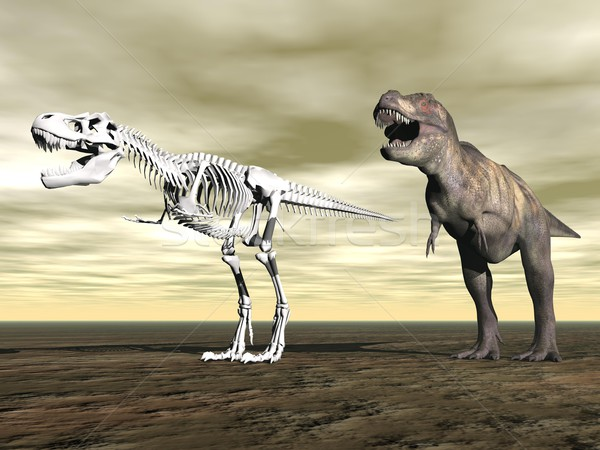 Tyrannosaurus rex - 3D render Stock photo © Elenarts