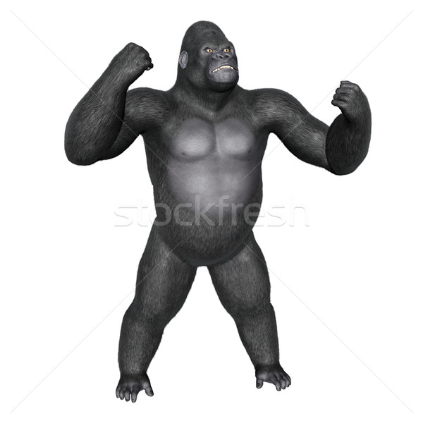 Angry gorilla fighting - 3D render Stock photo © Elenarts