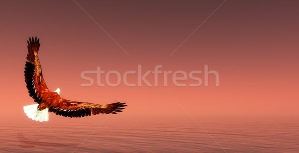 Eagle flying - 3D render Stock photo © Elenarts
