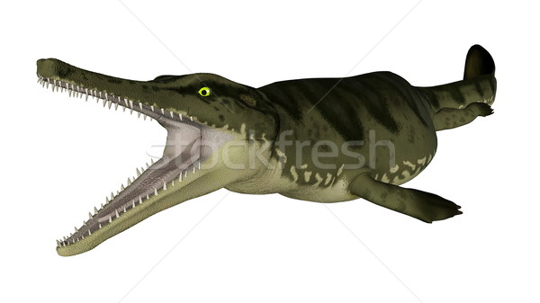 Metriorhynchus prehistoric fish - 3D render Stock photo © Elenarts
