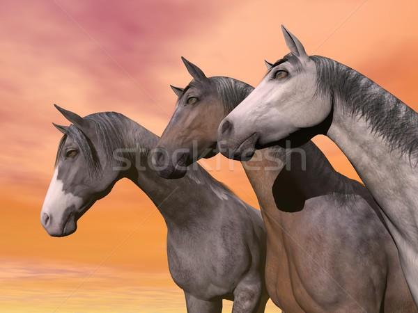 Portrait of three horses - 3D render Stock photo © Elenarts