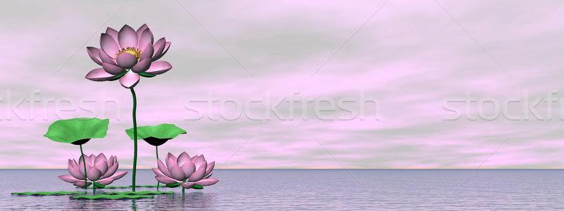 Pink waterlilies and lotus flowers - 3D render Stock photo © Elenarts