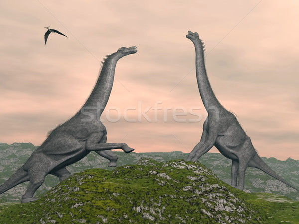 Dinossauros lutar 3d render dois nublado Foto stock © Elenarts