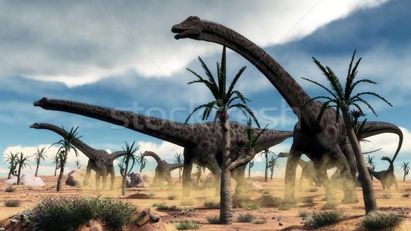Diplodocus dinosaurs herd in the desert - 3D render Stock photo © Elenarts