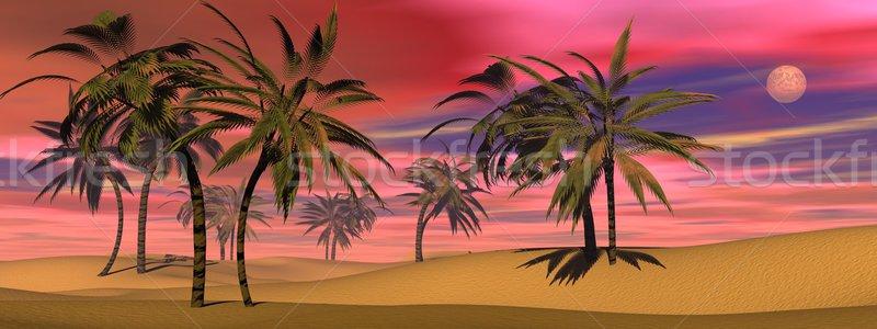 Zdjęcia stock: Tropikalnych · wygaśnięcia · 3d · wiele · palm · pustyni