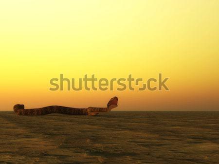 Slang bijten 3d render woestijn zonsondergang grafische Stockfoto © Elenarts