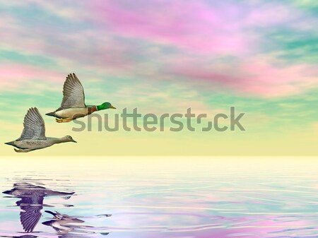 Butterfly boat - 3D render Stock photo © Elenarts