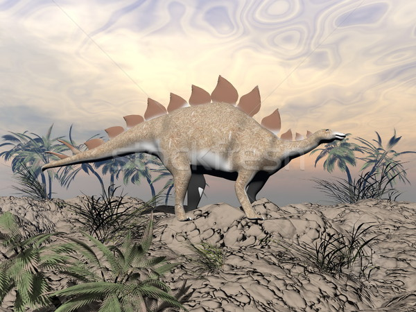Vigilent stegosaurus Stock photo © Elenarts