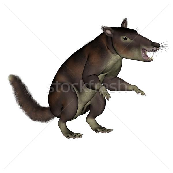Cronopio dentiacutus, prehistoric mammal - 3D render Stock photo © Elenarts