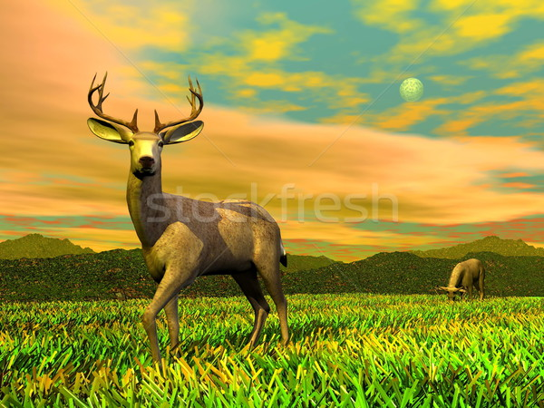 Bucks in ntaure - 3D render Stock photo © Elenarts