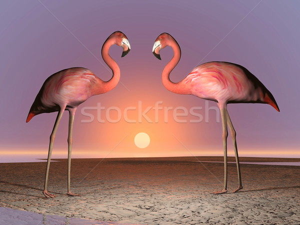 Flamingos date - 3D render Stock photo © Elenarts
