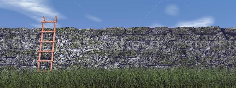 Succeed - 3D render Stock photo © Elenarts