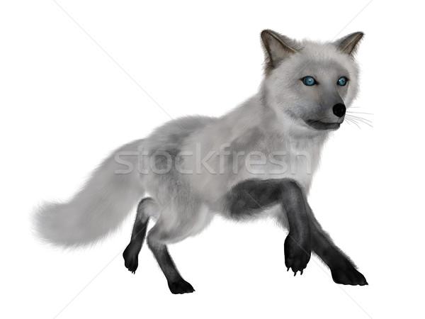 Fehér róka fut 3d render izolált háttér Stock fotó © Elenarts