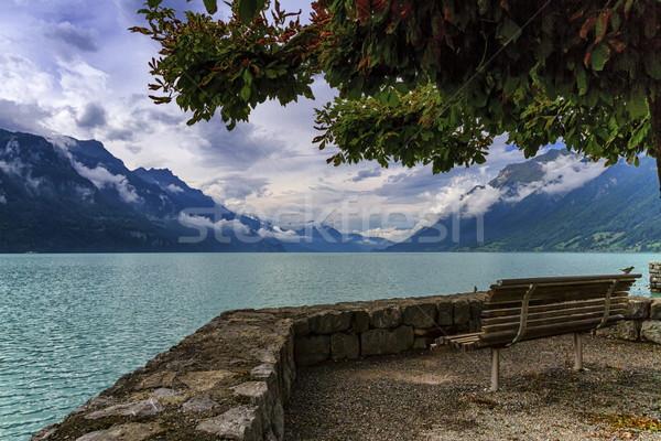 Bench at Brienz lake, Switzerland Stock photo © Elenarts