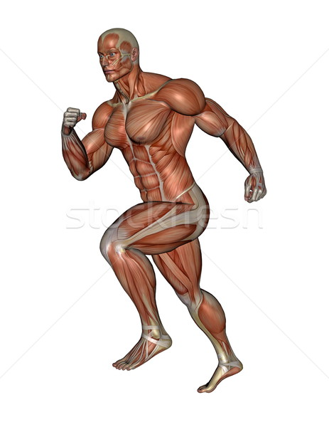 Muscular man running - 3D render Stock photo © Elenarts